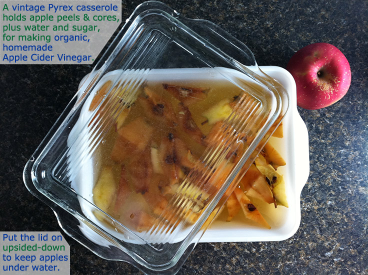 use a vintage Pyrex container to make apple-cider vinegar from peels and cores