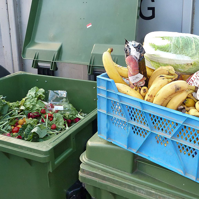 Climate Change and Food Waste