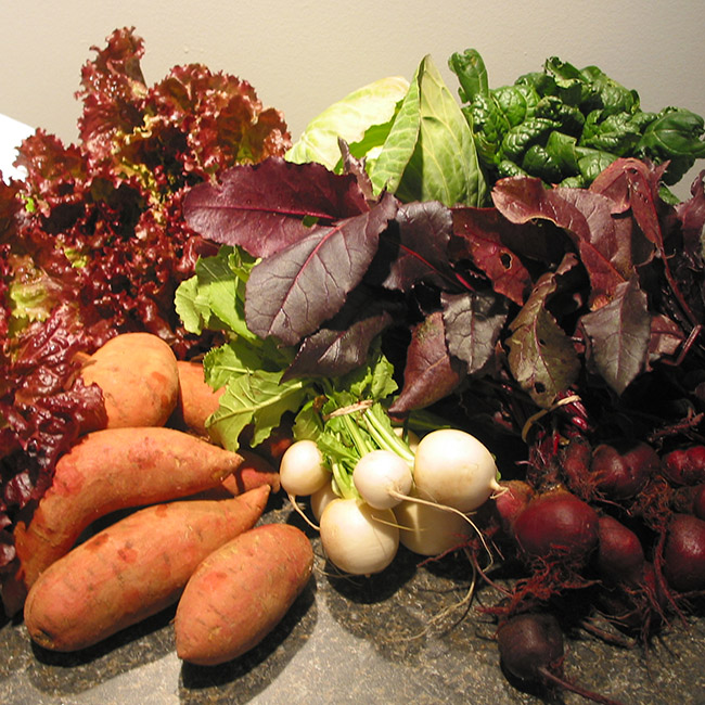 farmers' market vegetables December: lettuce, sweet potatoes, turnips, beets, tatsoi