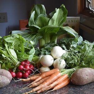 January vegetables from farmers' market: carrots, radishes, turnips, sweet potatoes, bok choi, kale, parley
