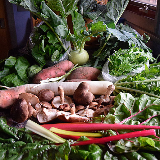 what's in season November: kohlrabi, daikon, rainbow chard, mushrooms, sweet potatoes, mizuna, greens
