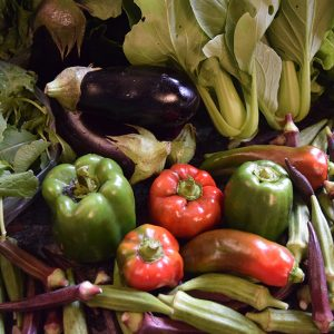 farmers' market produce from September: bell peppers, eggplant, okra, bok choy, arugual