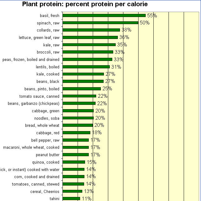 How much protein is enough? What are the best sources?