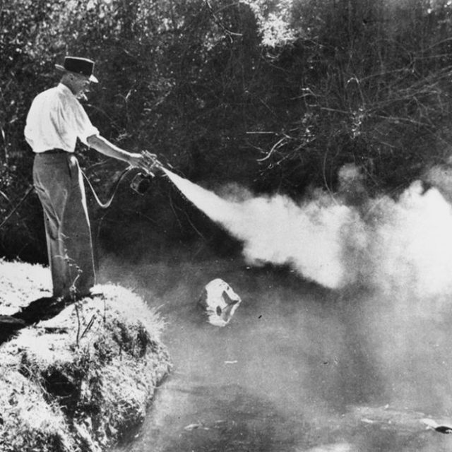 Man spraying huge fog of mosquito spray into a stream