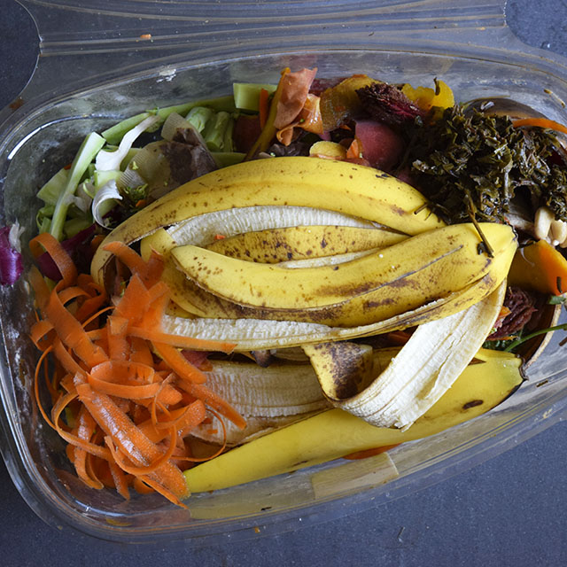 food scraps saved for composting