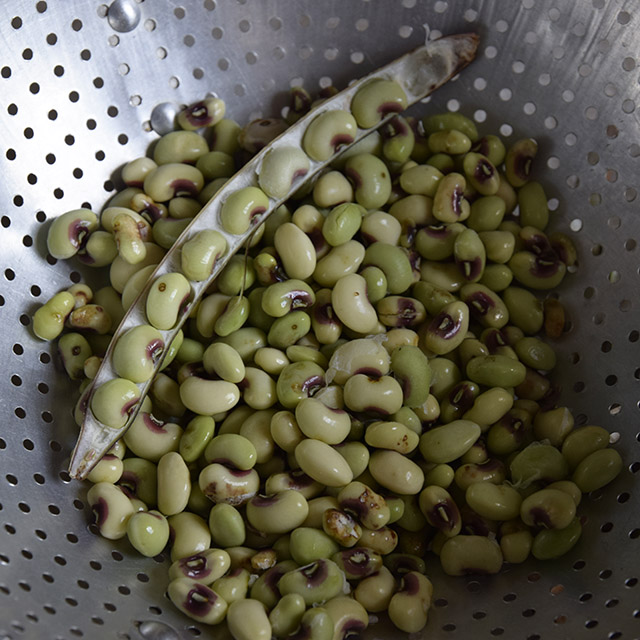 How to Shell Fresh Black-Eyed Peas and Field Peas