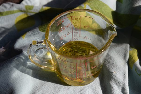 olive oil in a Pyrex cup with garlic and rosemary