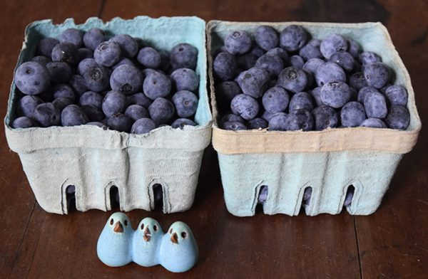 fresh blueberries in boxes with pottery birds