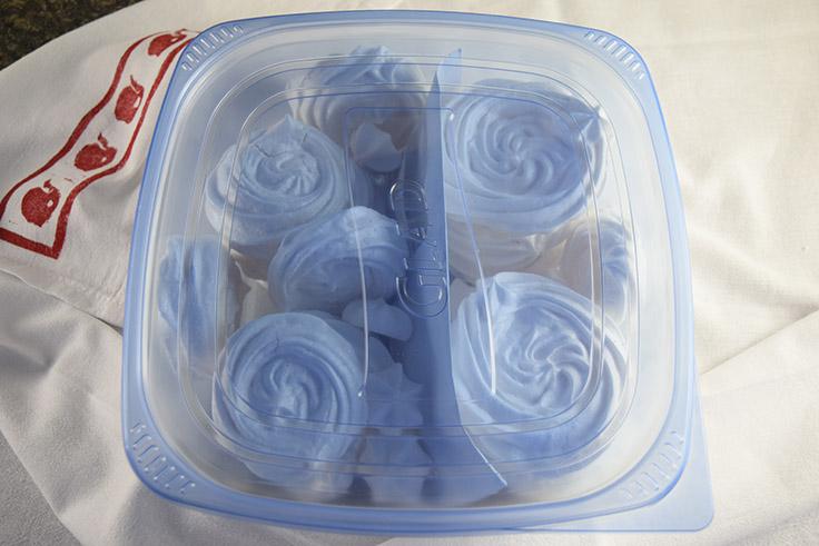 pavlovas in an airtight container