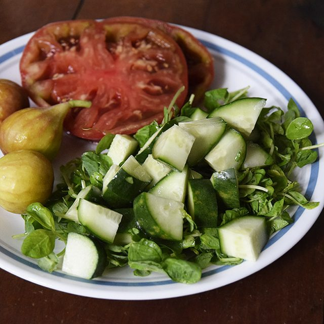 cucumber salad with figs and sliced tomatoes